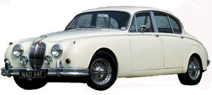 Jaguar Mark -a.jpg