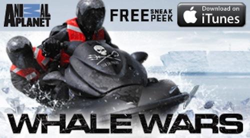 whale-wars-itunes-right-rail.jpg